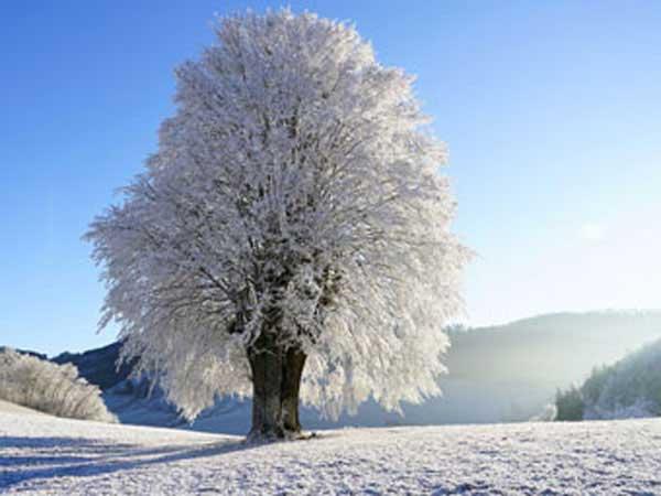 2020 Winter Solstice.When Is Winter 2020 Calendar Date
