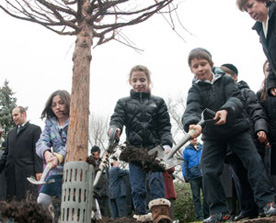 Jewish children planting a tree